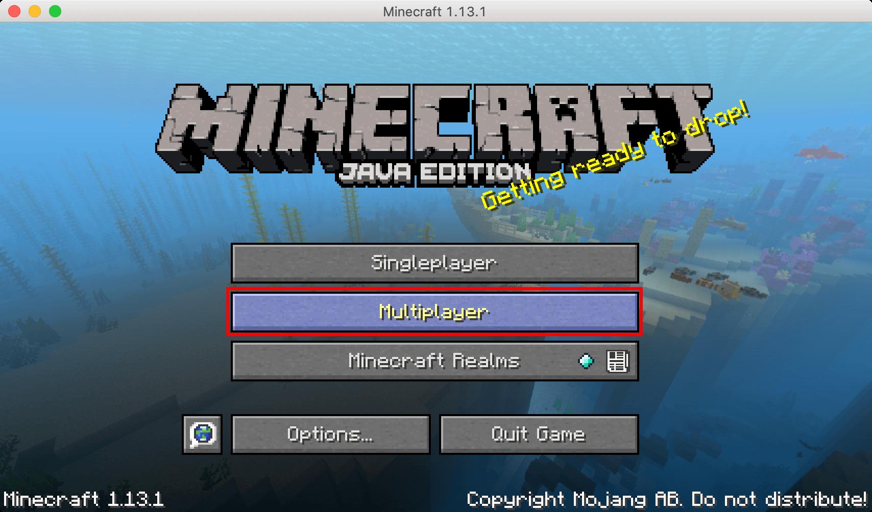 「Multiplayer」を選択